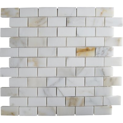 Calacatta Gold Mounted 1 x 2 Marble Subway Tile in White