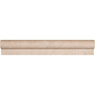 12 x 2 Polished Rail Molding Tile Trim in Crema Marfil