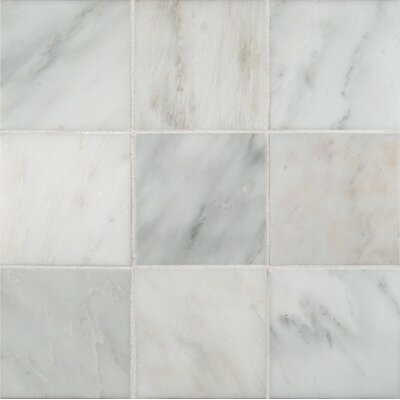 4 x 4 Marble Field Tile in Arabescato Carrara