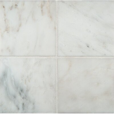 6 x 6 Marble Field Tile in Arabescato Carrara