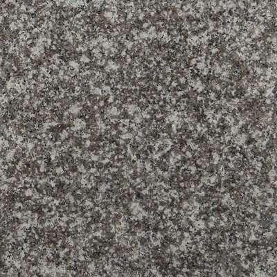 Bain Brook 12 x 12 Granite Field Tile in Brown