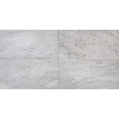 12 x 24 Marble Field Tile in Arabescato Carrara