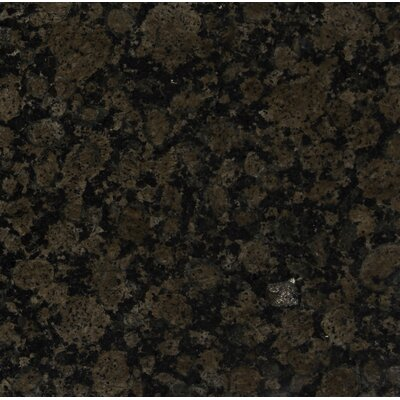 Baltic 12 x 12 Granite Field Tile in Brown