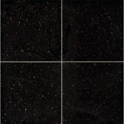 Galaxy 18 x 18 Granite Field Tile in Black