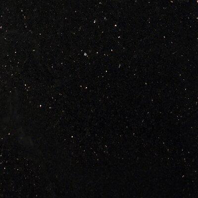Galaxy 12 x 12 Granite Field Tile in Black