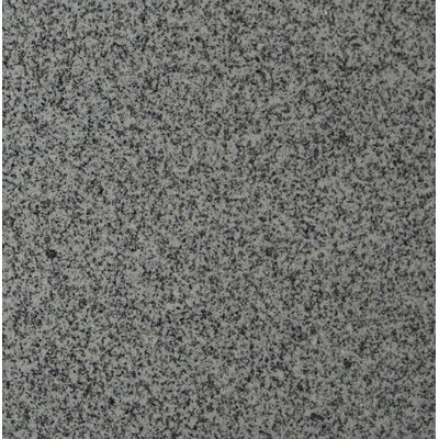 12 x 12 Granite Field Tile in Bianco Catalina