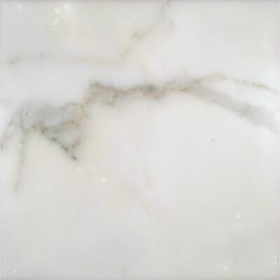 12 x 12 Marble Field Tile in Calacatta Gold