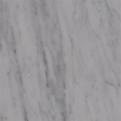18 x 18 Marble Field Tile in Carrara White