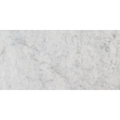 12 x 24 Marble Field Tile in Carrara White