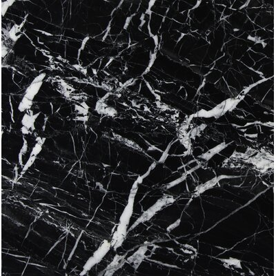 12 x 12 Marble Field Tile in Black