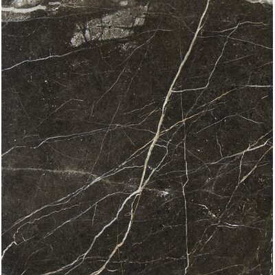 12 x 12 Marble Field Tile in Laurent Brown