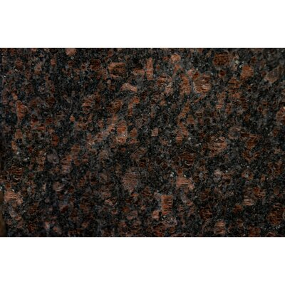 18 x 31 Polished Granite Tile in Tan Brown