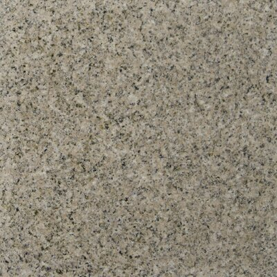 12 x 12 Granite Field Tile in Giallo Fantasia