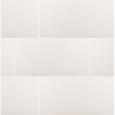 Domino 12 x 24 Porcelain Subway Tile in Matte White