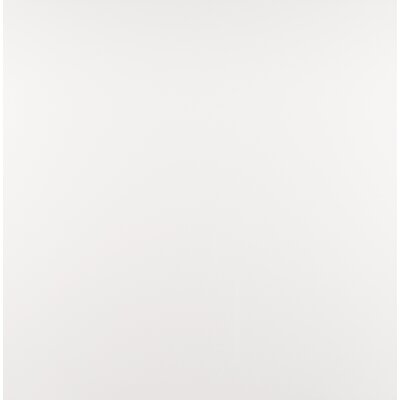 Domino 24 x 24 Porcelain Subway Tile in Matte glaze White (Set of 3)