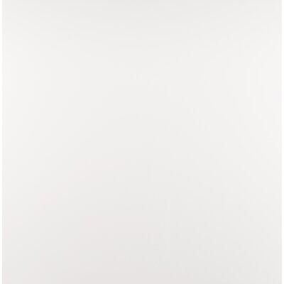 Domino 24 x 24 Porcelain Field Tile in Matte glaze White