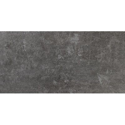 Cemento Treviso 12 x 24 Porcelain Field Tile in Gray
