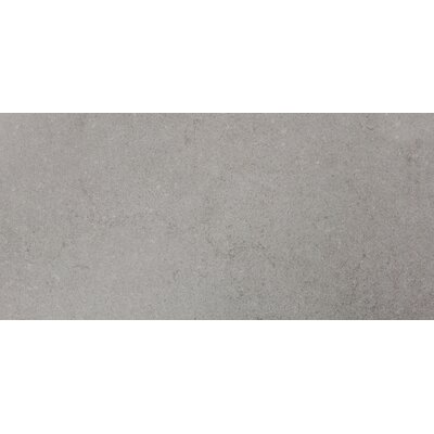 12 x 24 Porcelain Field Tile in Gray