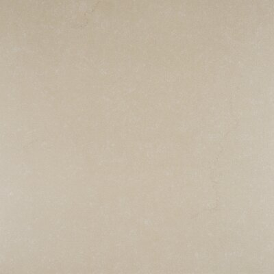 Dimensions Khaki 24 x 24 Porcelain Field Tile in Beige