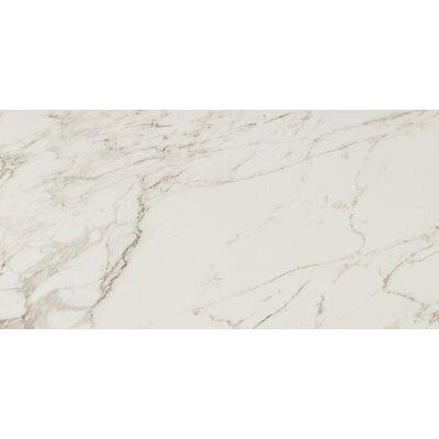 Pietra Carrara 12 x 24 Porcelain Field Tile in White