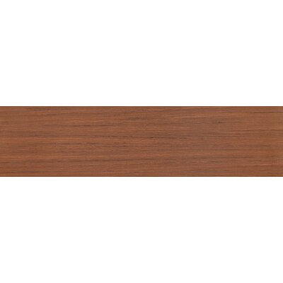 Sygma Cafe 6 x 24 Ceramic Wood look Tile in Brown
