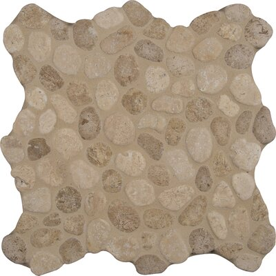 Blend 12 x 12 Marble Pebble Mosaic Tile in Brown