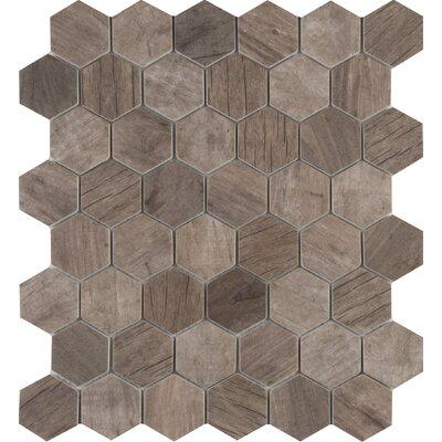 Driftwood Hexagon 2 x 2 Glass Mosaic Tile in Brown