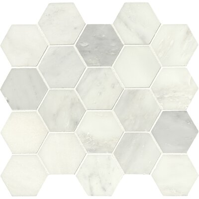Greecian Hexagon Polished 3 x 3 Marble Mosaic Tile in White