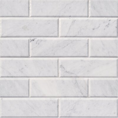 Arabescato Hon And Big Bev 4 x 12 Marble Subway Tile in White
