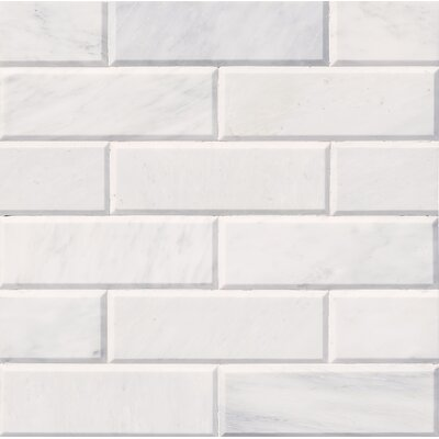 Pol And Big Bev 4 x 12 Marble Subway Tile in White