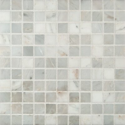 Arabescato Honed 1 x 1 Marble Mosaic Tile in White