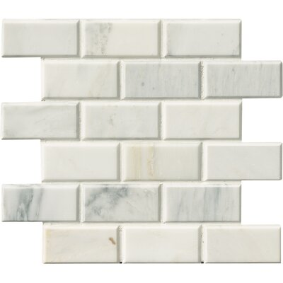 Arabescato and Beveled Honed 2 x 4 Marble Mosaic Tile in White