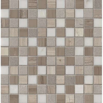 Arctic Storm 1 x 1 Marble Mosaic Tile in Gray