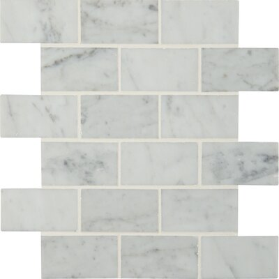 Carrara Polished 2 x 4 Marble Mosaic Tile in White