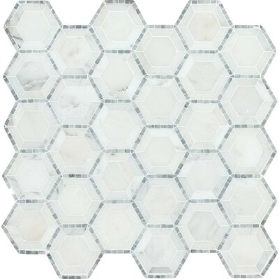 Telaio Hexagon Honed 2 x 2 Marble Mosaic Tile in White