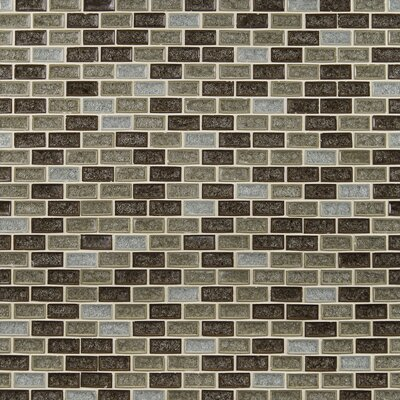 Fossil Canyon Mounted 1 x 2 Glass Mosaic Tile in Multi