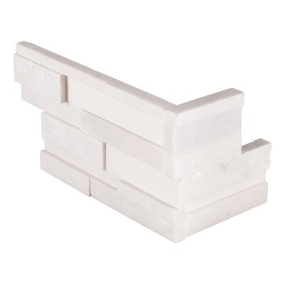 6 x 18 Mosaic tile Tile in White (Set of 5)