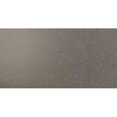 Dimensions 12 x 24 Porcelain Field Tile in Gray