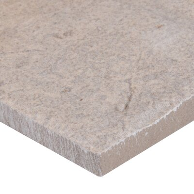 Capella Brick 5 x 10 Porcelain Field Tile in Beige