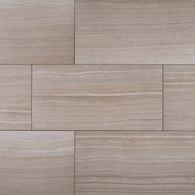 Eramosa 12 x 24  Porcelain Wood Look/Field Tile in Silver