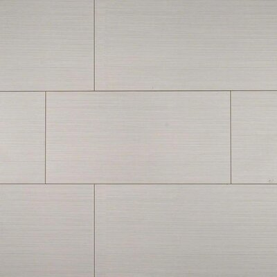 Focus Glacier 12 x 24 Porcelain Filed Tile in Gray