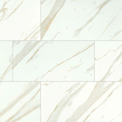 Calacatta 12 x 24 Porcelain Tile in White