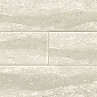 Classique Gris 4 x 16 Porcelain Bullnose Tile Trim in Gray