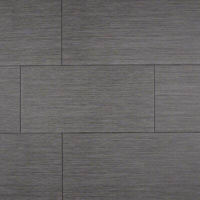 Focus Graphite 12 x 24 Porcelain Wood Look/Field Tile in Gray