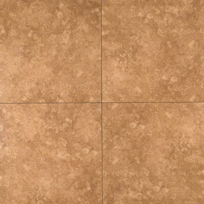 Baja 20 x 20 Ceramic Field Tile in Brown