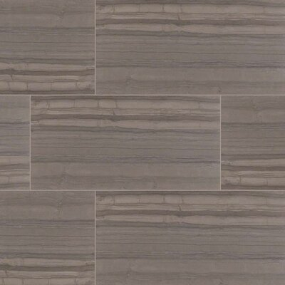 Sophie Anthracite 12 x 24 Porcelain Wood Look Tile in Gray