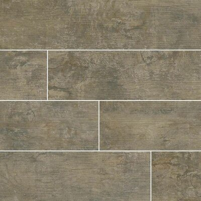 Ecowood Argent 6 x 24 Porcelain Wood Look Tile in Gray