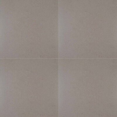 Dimensions Gris 24 x 24 Porcelain Field Tile in Gray (Set of 3)