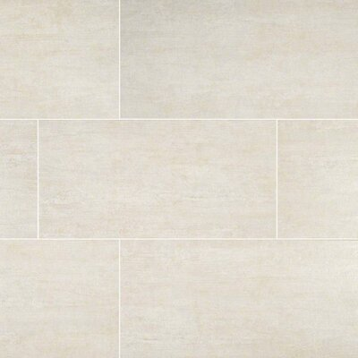 Metropolis Avorio 12 x 24 Porcelain Field Tile in Gray
