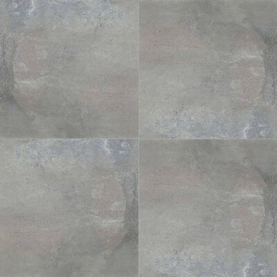 Cemento Napoli 12 x 24 Porcelain Tile in Black